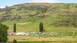 Great NZ Trek